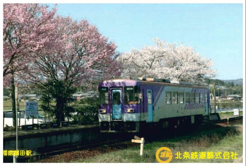 さくら播磨横田